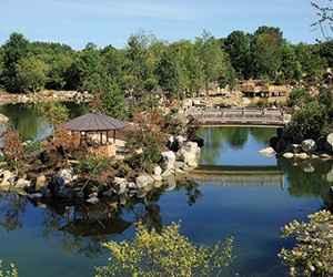 FM Gardens Japanese Garden