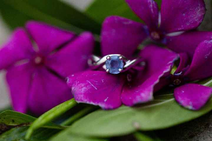 How involved were you in engagement ring shopping? - 2