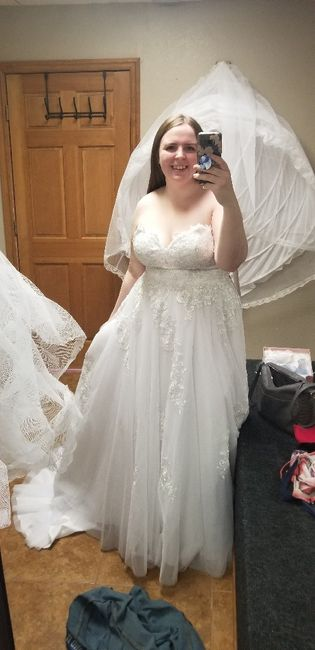 Let's see the dresses. 7