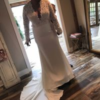 My dress came in!!