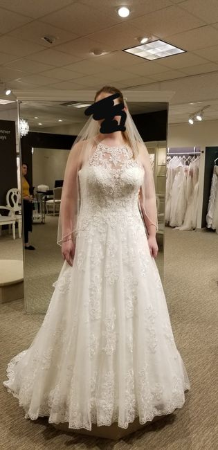 What color is your wedding dress? 11