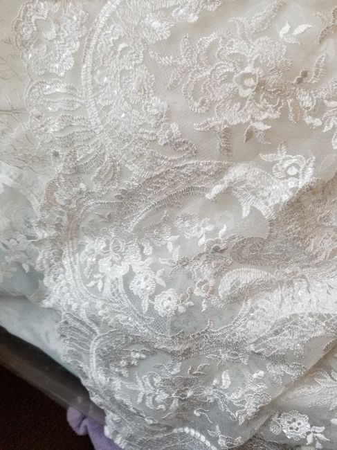 Dress Listed as Ivory---but It's not Ivory 8