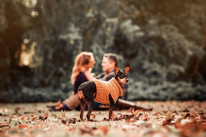 Post Your Engagement Pics! 6