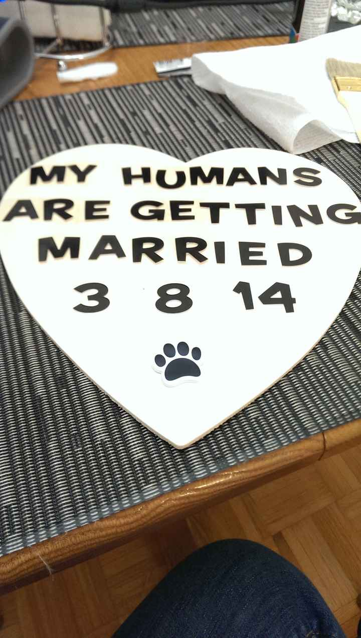 """Help me pick out some """"Save the Date"""" props :) - pic heavy!"""
