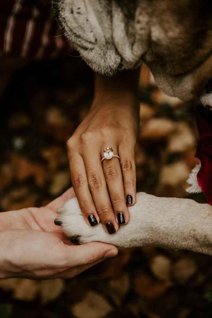 Engagement Shoot! Spam! - 4
