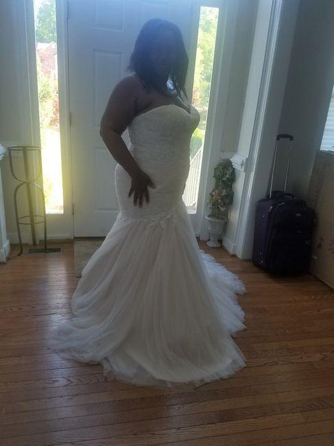 i finally got my dress! 1