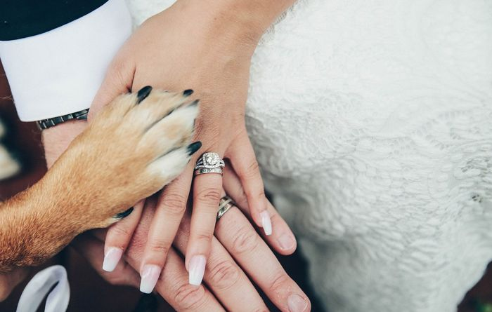 Tell me about the special touches at your wedding! 9