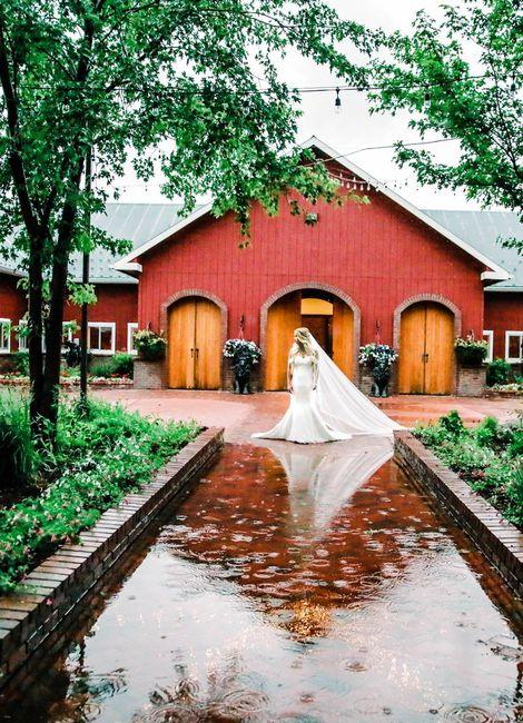 Colorado Brides 3