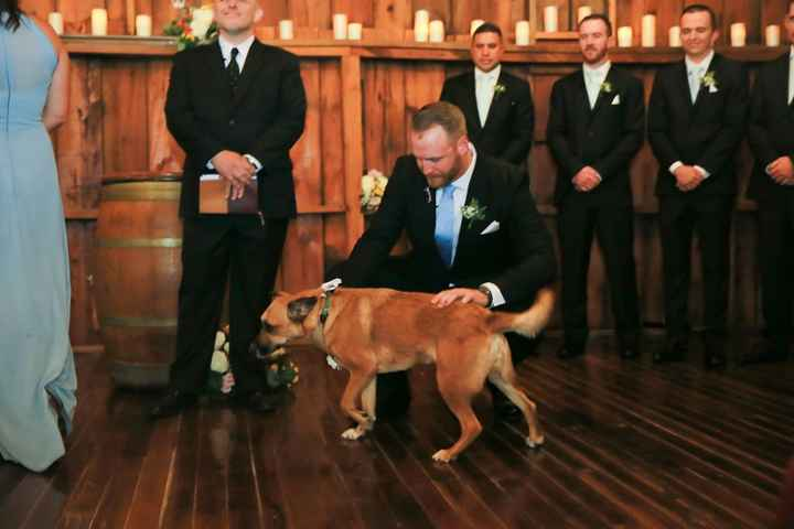 Our dog, Lucky, was our dog of honor.