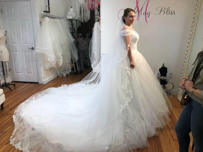 My dress has arrived - 1
