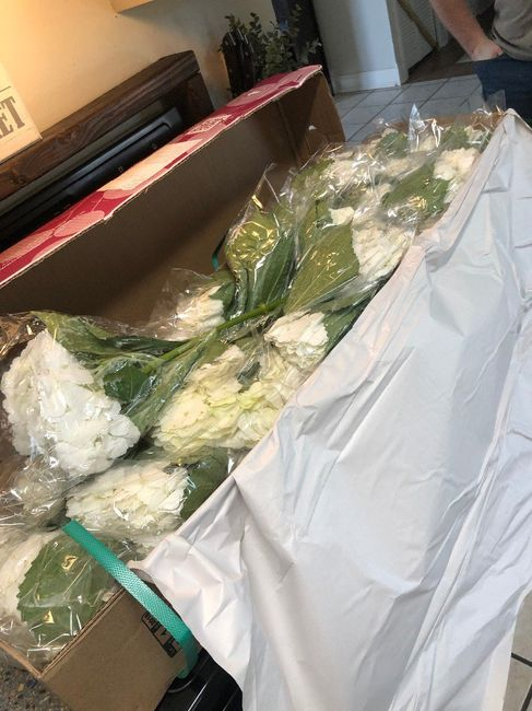 Sams Club Bulk Floral total Review- Delivery to wedding day! (photos included) 2