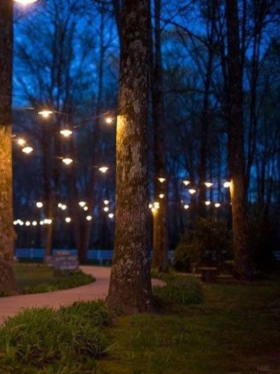 Let's see where you're getting married! Show off your wedding venue!! 2
