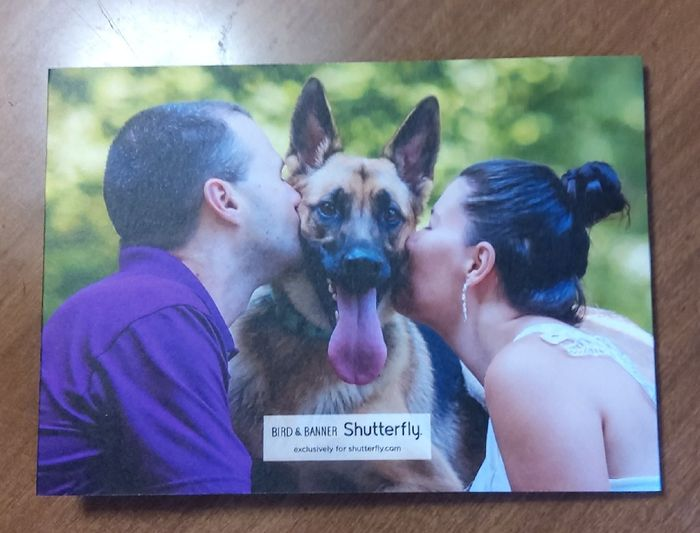 How many pictures did you use on your Save the Dates? 11