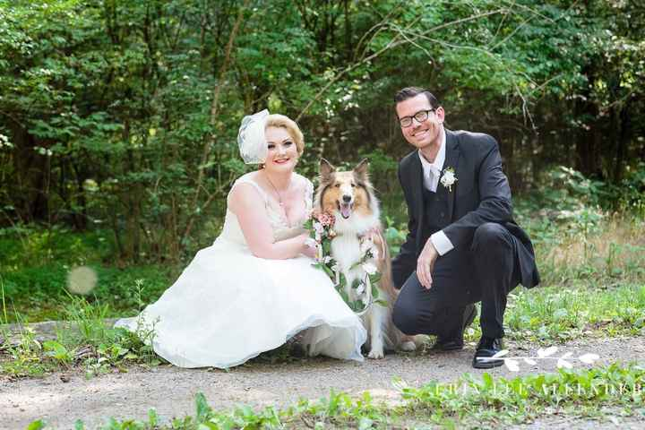 i want my dog part of the wedding and fiancé doesn't - 2