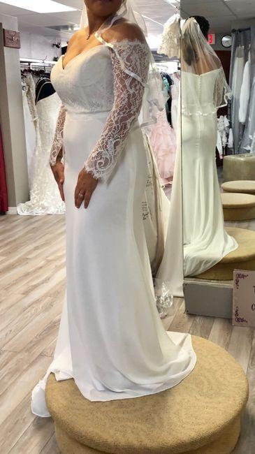 Traveling Wedding Dress 1