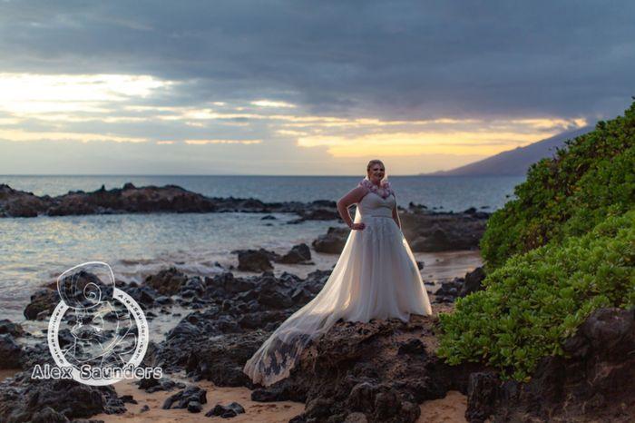 Elopement in Maui Help 1