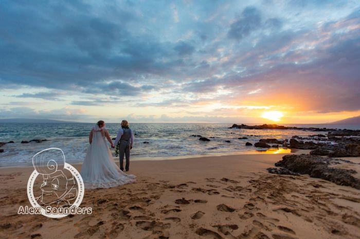 Elopement in Maui Help 2