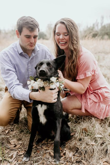 Engagement pics with our pup!!! 1
