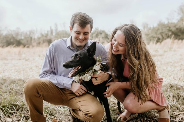 Engagement pics with our pup!!! 2