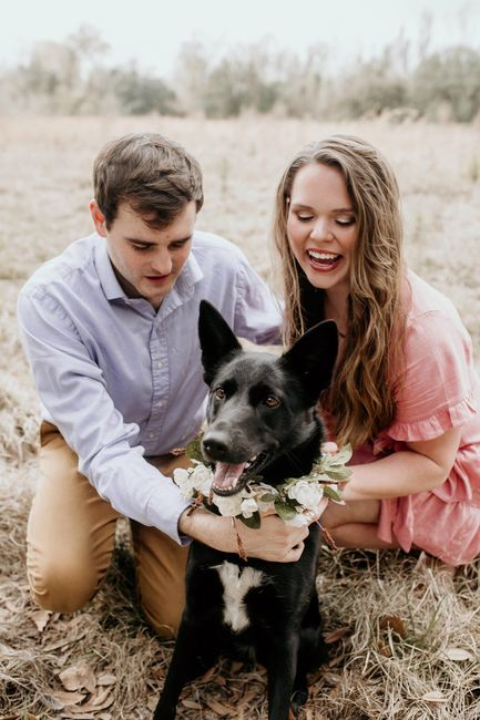 Engagement pics with our pup!!! 3