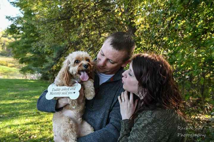 Wish i could have my dog in some of my wedding photos - 1
