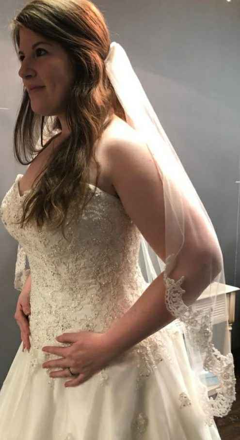 Can't decide on a veil! Need help! Pic heavy! - 2