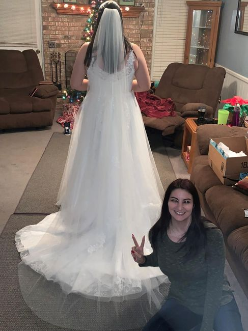 What length veil? Picture included. 3