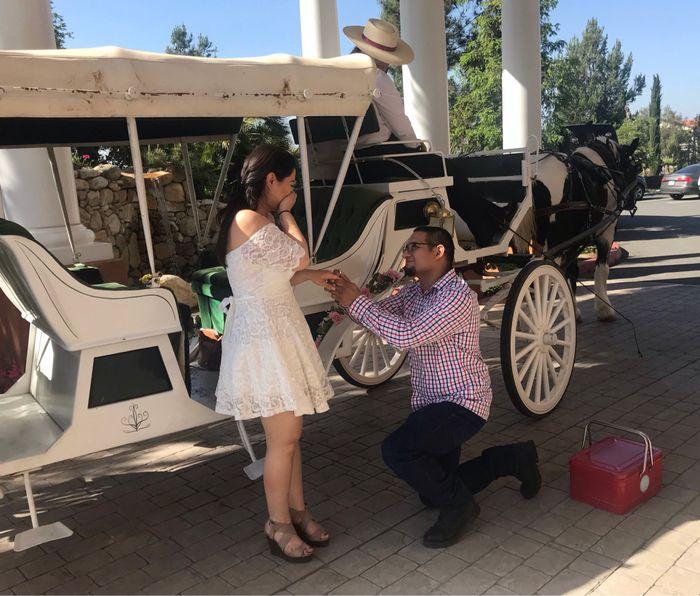 Proposal Stories 15