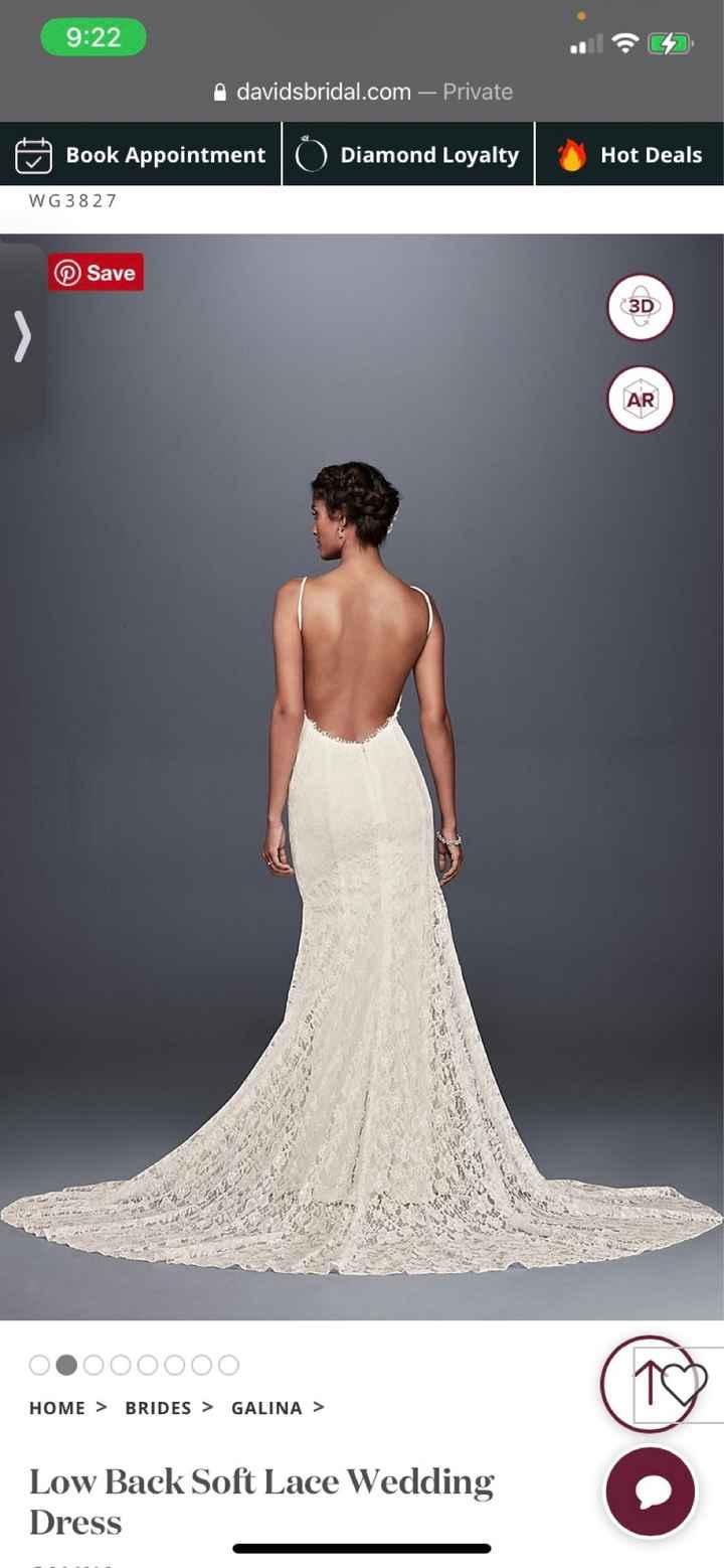 Wedding Dress undergarments - 1