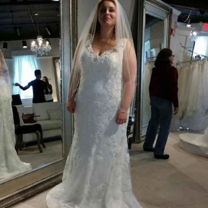 Where are my curvy brides?
