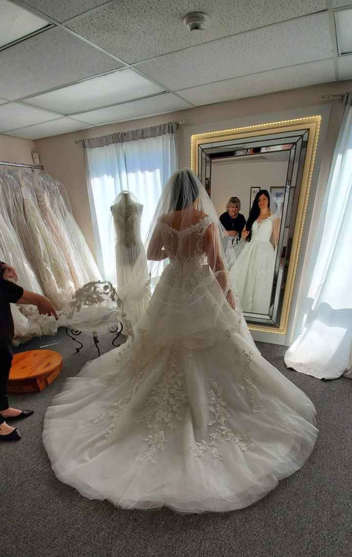 Wedding dress doubt - 2