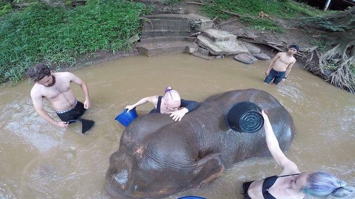 Thailand honeymoon 4