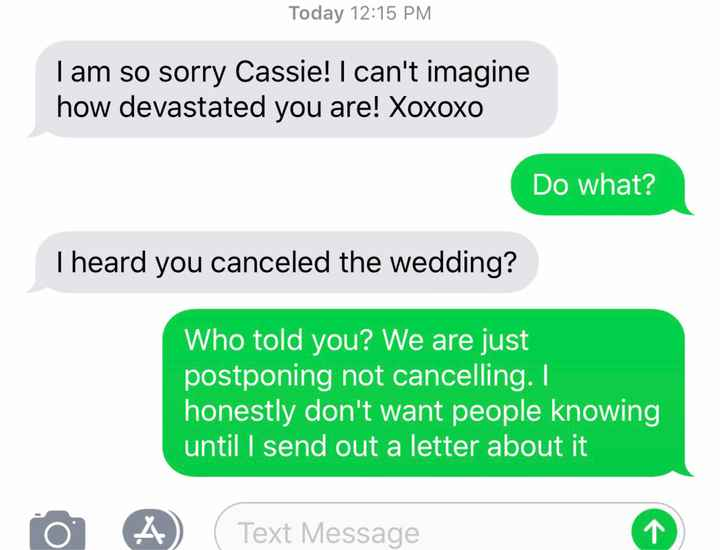 Wedding Postponed due to Covid-19? - 1
