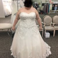 David's Bridal. I am planning to put in a corset back and use a red lace to tie it. Also considering