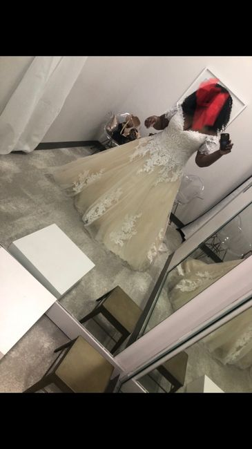 Dress Help! Please post your gowns!! 5