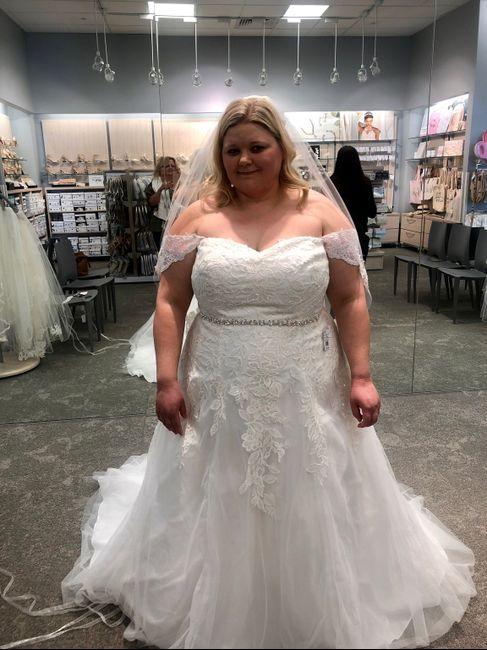 Wedding dress indecisiveness 1