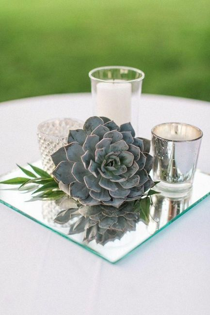 Succulent Centerpieces Weddings Planning Wedding Forums