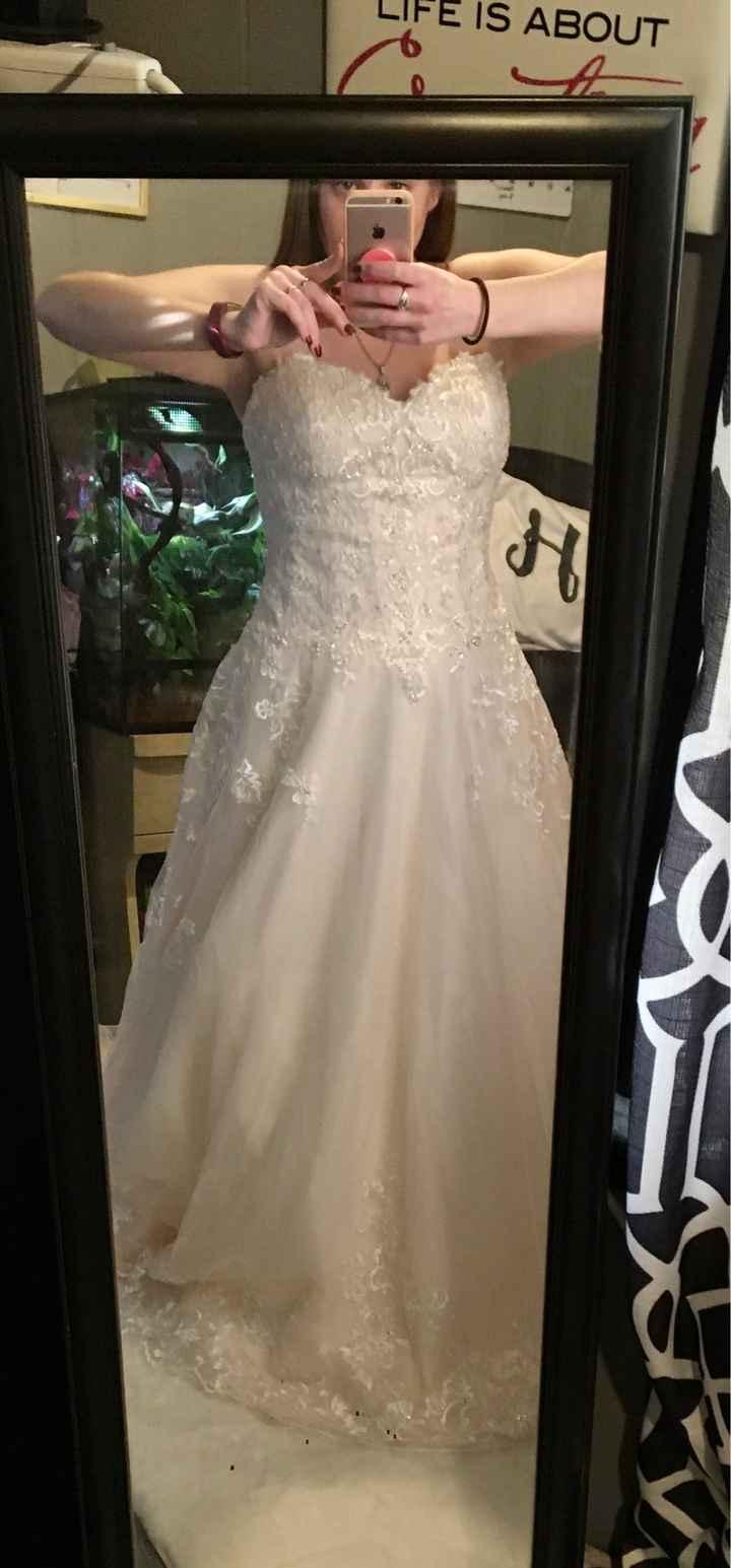 Wedding Veil - 2