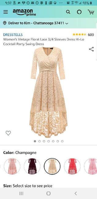 Mother of the bride dress 3