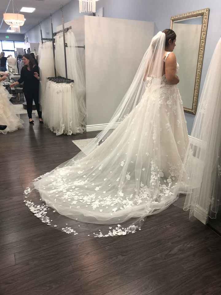 Long veils - 1