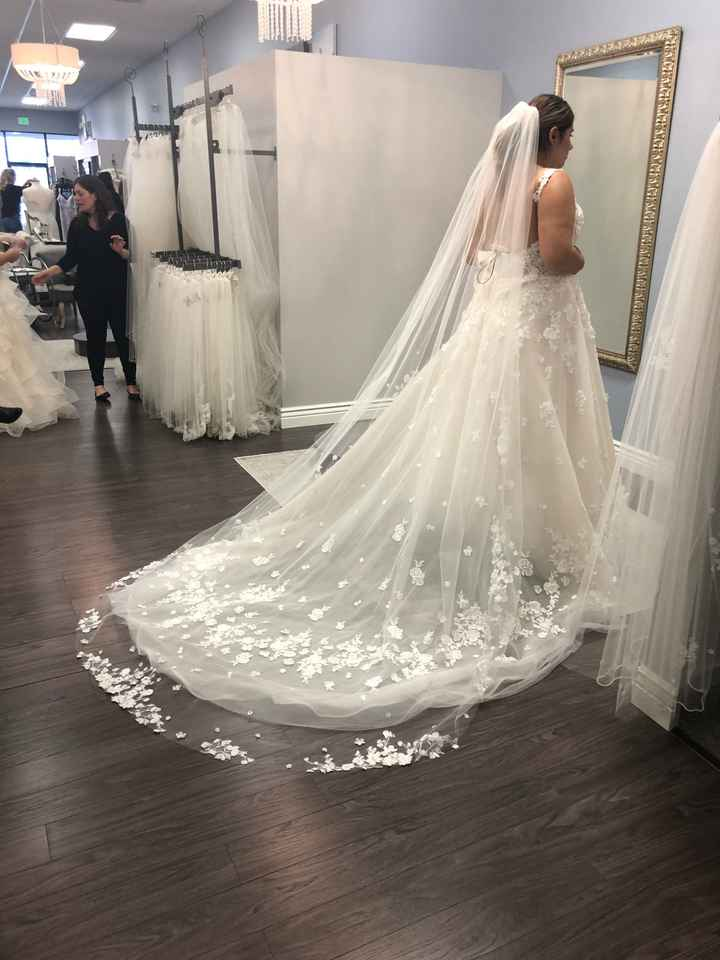 Having second thoughts on my veil... - 1