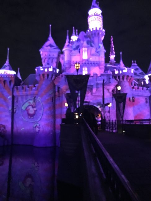 Proposal pics at Disney! - 2