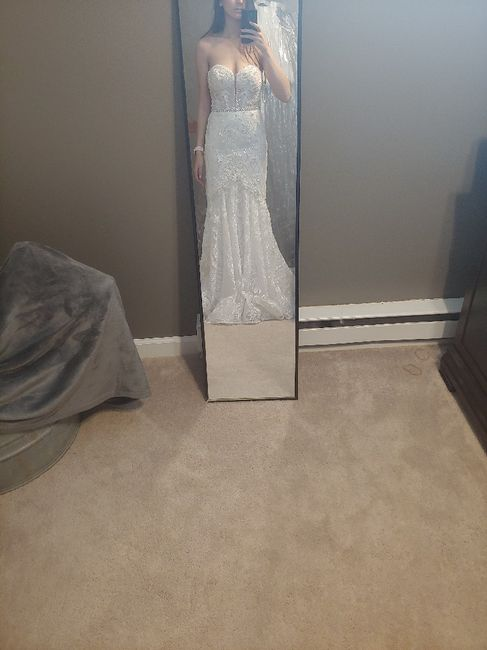 First Fitting Success!! David's Bridal 11