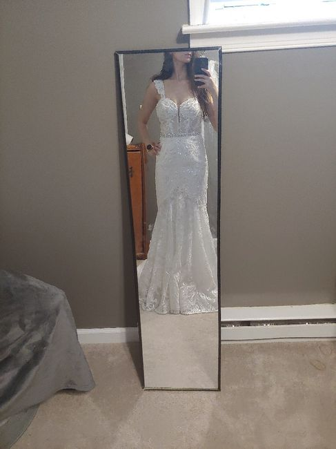 First Fitting Success!! David's Bridal 12