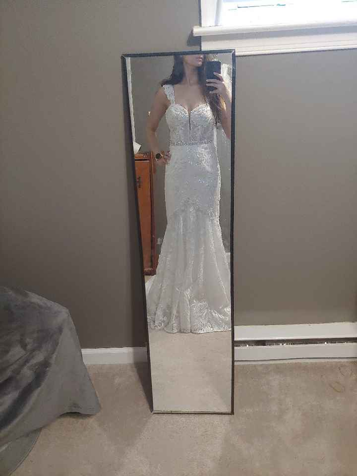 First Fitting Success!! David's Bridal - 2