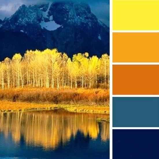 Color Scheme Confusion questions
