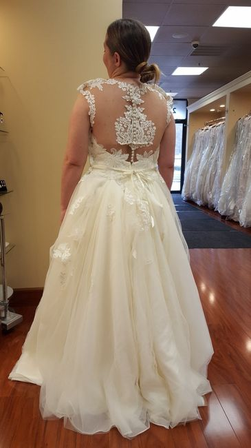 Searching For Low Back Strapless Plus Size Corsetbra For Under