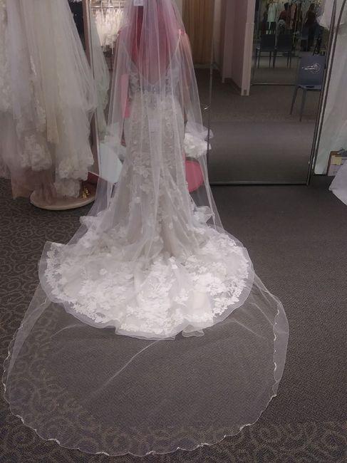 Veil or no? 3