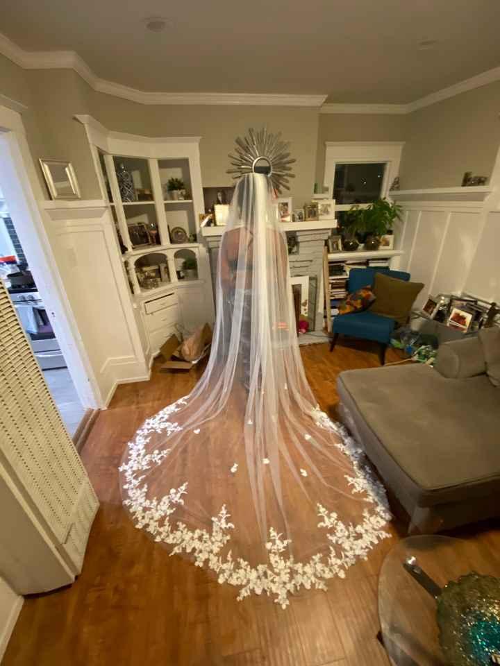 My veil came!! - 1