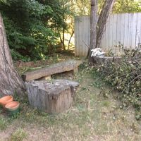 Very old stump tables